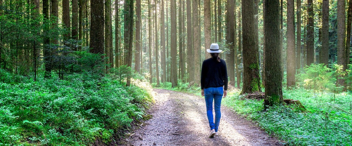 mindful walking in nature